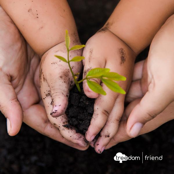 Come ridurre le emissioni di Co2? Diamo voce alla natura!